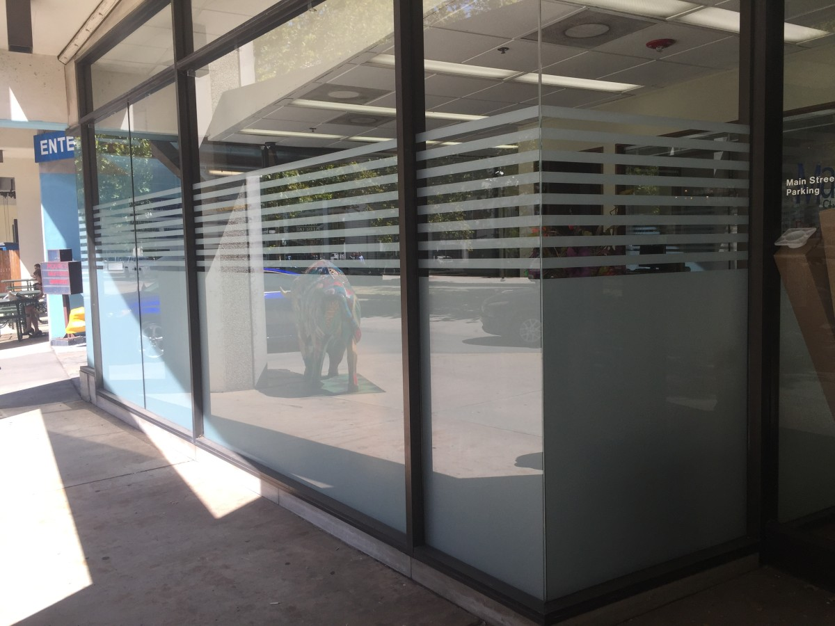 Enhance Your Space with Decorative Window Films